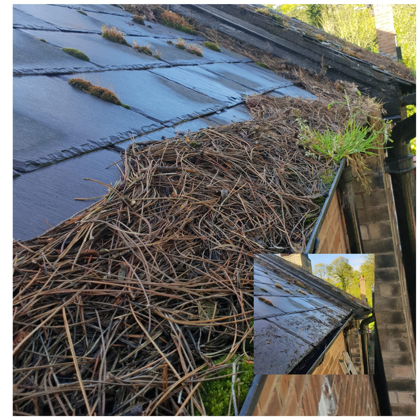 Gutter clearing in Hawarden, Shotton and Queensferry today.: Local Domestic & Commercial Cleaning Services Contractors Near Me in Flintshire, Denbighshire, Wrexham, Cheshire, Wirral, Chester, Liverpool, Cheshire, Shotton, Connah's Quay, Queensferry, Hawarden, Ewloe, Drury, Buckley, Mynydd Isa, Northop, Northop Hall, Mold, Garden City, Saughall, Blacon, Chester, Pentre, Sandycroft, Mancot, Sychdyn, Alltami, Pen Y Ffordd, Higher Kinnerton, Deeside, Chester, Mold and Nearby Areas.